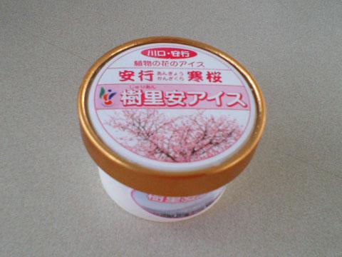 樹里安アイス 寒桜