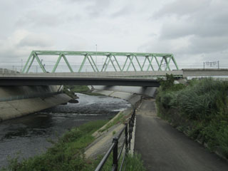 グリーンライン架線下(川和町)