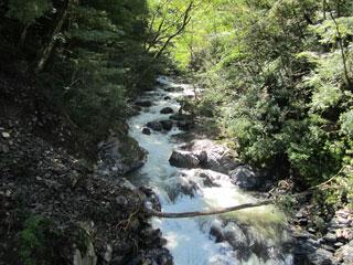 R411 渓流