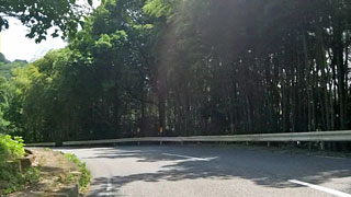 冷川(登り口)