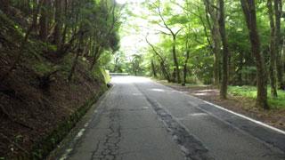 長尾峠(途中)