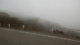 達磨山下り